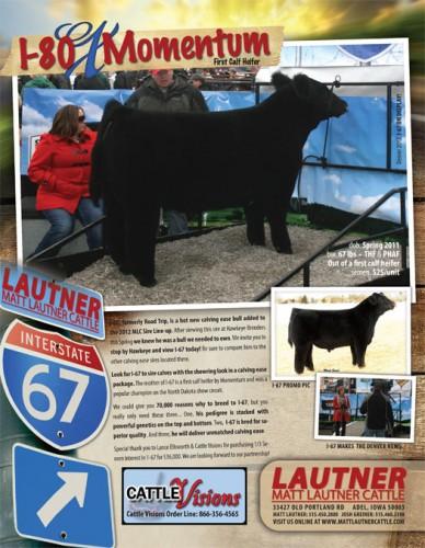 I-67 Bull