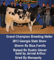 Grand Champion Breedign Heifer
