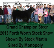 Champion In Fort Worth