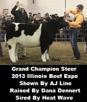 Illinois Beef Expo Champion Sired By Heat Wave