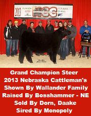 Champion Sired By Monopoly