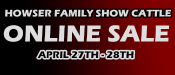 howserfp Howser Family Show Cattle Online Sale   Ends Sunday at 6:00 PM Central