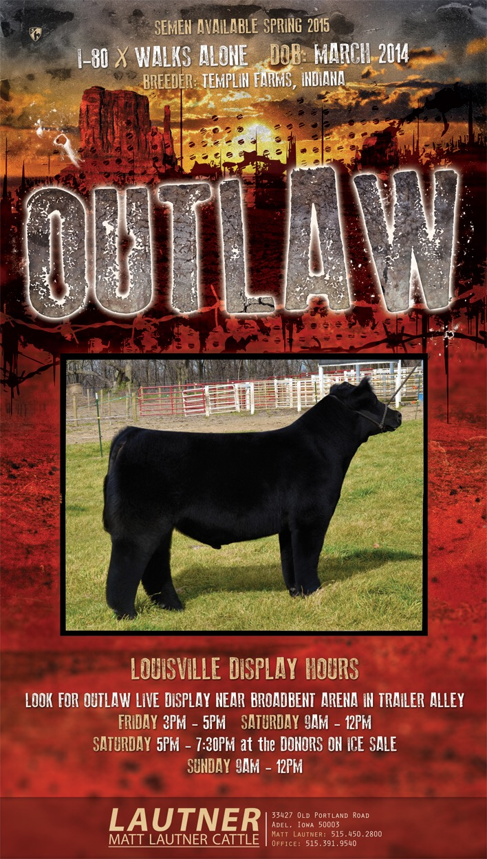Breed Lautner S Outlaw On Display Friday Afternoon In