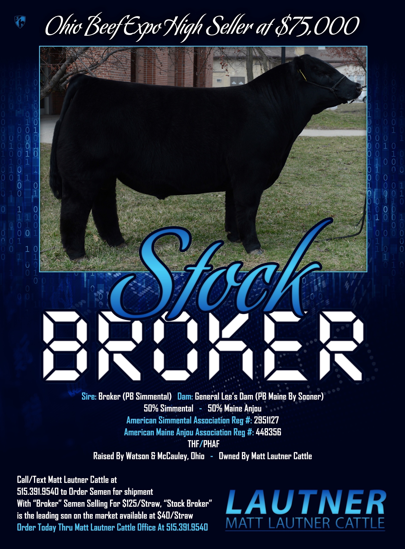 List online stock brokers usa