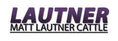 Matt Lautner Cattle | News From The Road