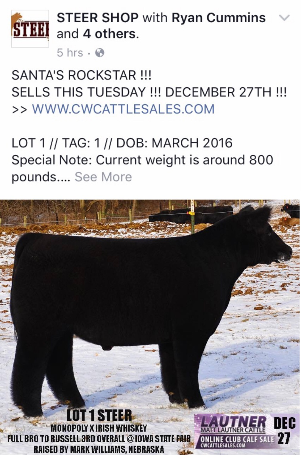 Steer Shop Heifer Shop Facebook Advertising Works Mlc Uses It