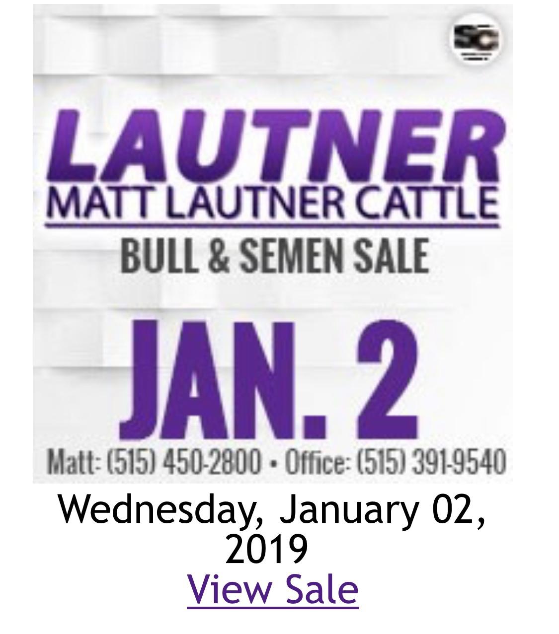 799692874a269 The Next Generation In Online Bull Buying!! – Matt Lautner Cattle ...